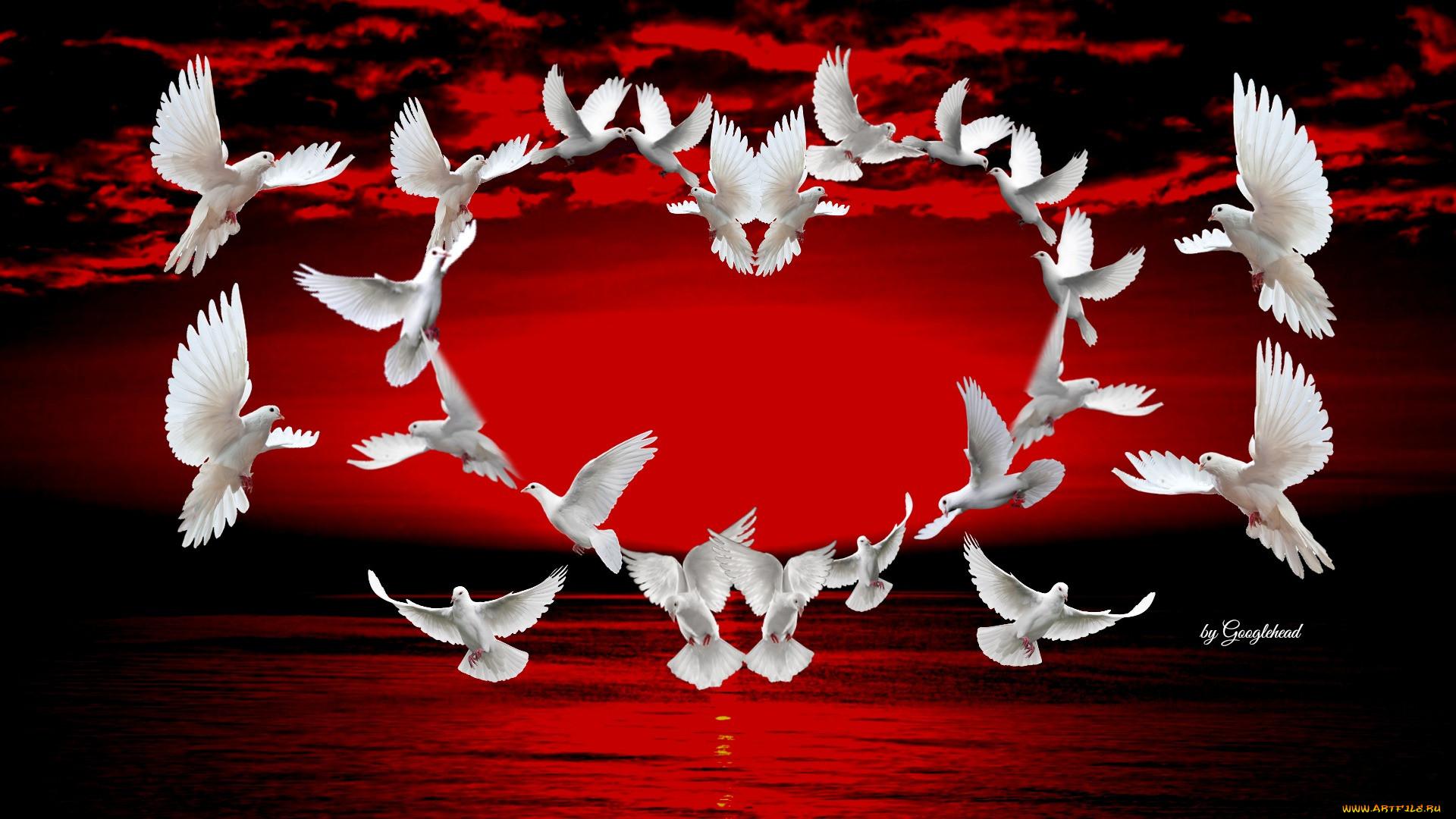 прямо картинки с сердцами и голубями рядом